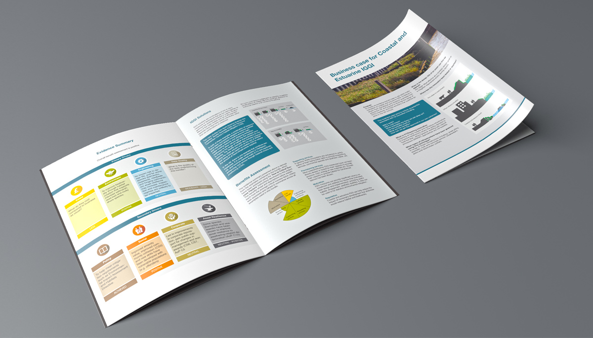 IGGI Business Case Brochure