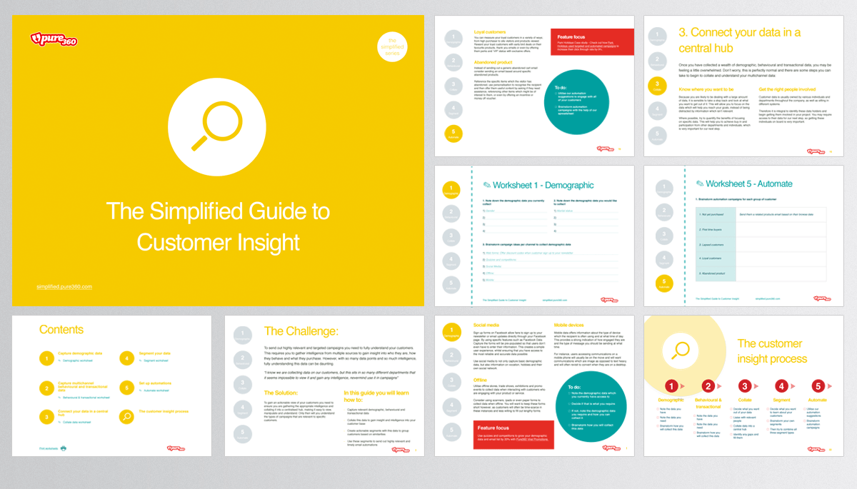 Guide To Customer Insight